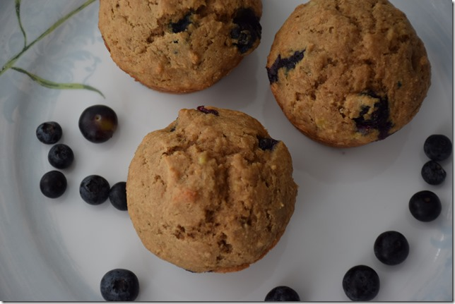 Blueberry Banana Muffins 012
